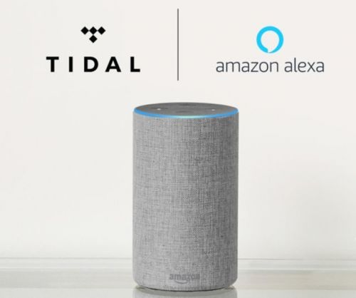 Tidal Music Now Available On Amazon's Echo