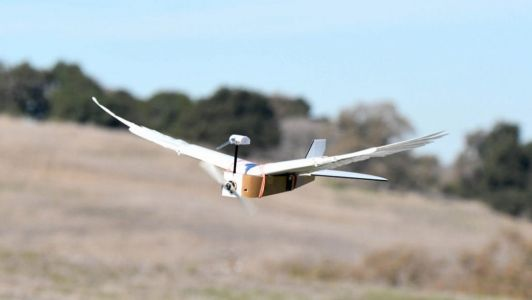 Bird-inspired Drone Bends Its Wings To Move Quickly