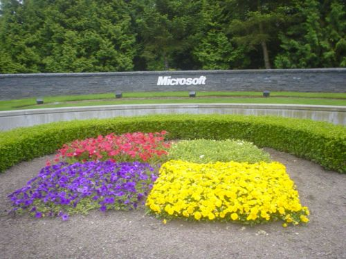 Microsoft engineer complains that company is biased against white men