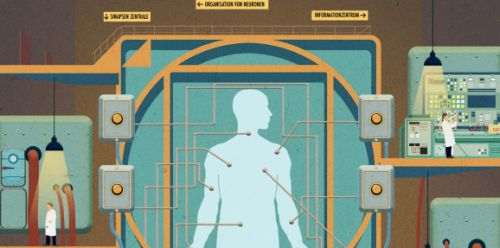 Homo Machina uses your phone to show how the human body is a machine
