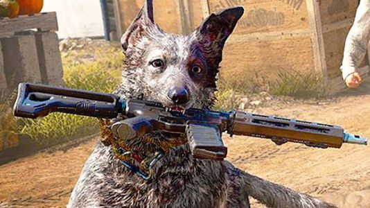 In Far Cry 5, you heal your dog by petting him