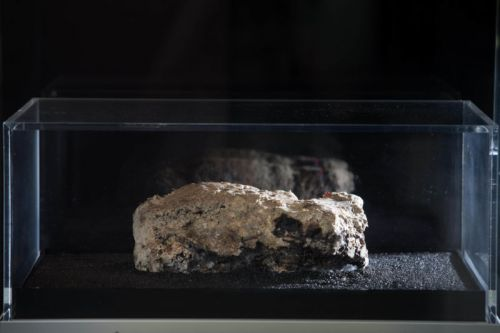 London museum is livestreaming a key 21st-century artifact-festering sewage