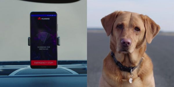 Huawei's 'RoadReader' AI experiment uses a Mate 10 Pro to pilot a driverless car and avoid hitting dogs