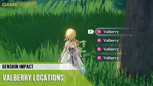 Genshin Impact Valberry Locations: Where to Buy & Farm Them