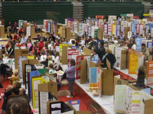 See Science Fair even if you've never entered one in your life