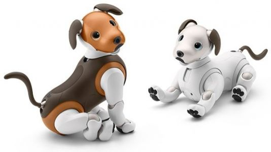 Sony's adorable Aibo now comes in a limited edition chocolate color scheme