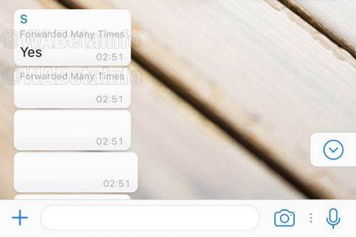 WhatsApp May Start Warning Users About Chain Message Spam