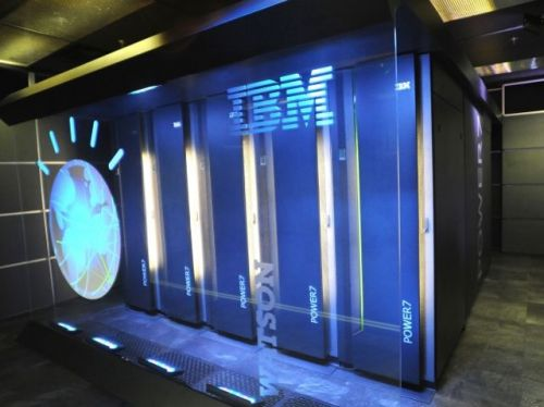 IBM Uses AI To Help Keep This Zoo's Heating Costs Down