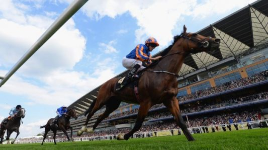 Royal Ascot live stream: how to watch the horse racing for free online from anywhere