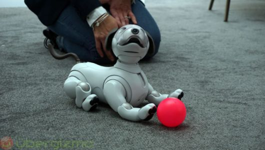 New Sony Aibo Robot U.S. Pre-Orders Open