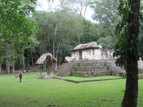 Ancient Maya traded dogs for use in religious ceremonies, new study shows