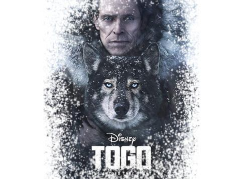 Disney Togo movie trailer released starts streaming December 20th on Disney+