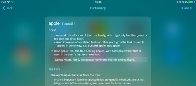 How to Look Up a Word Definition in iOS 11