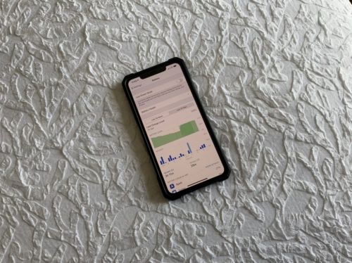 Living With the iPhone 11 Pro Max: Battery and Screen