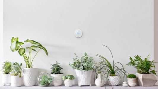 Refurbished Nest Learning Thermostat Now Available From Google Store
