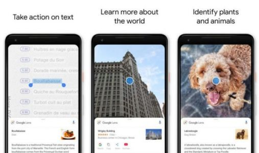 Google Lens Testing Image Import Feature