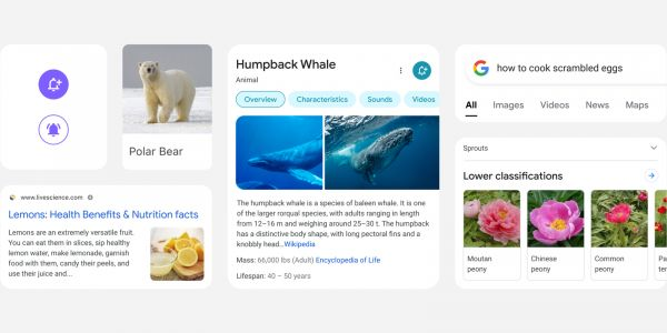 Google redesigns mobile Search on Android and iOS to be easier to read
