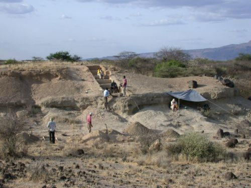 Unstable climate forced early humans to be more social and creative