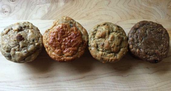The quest for a filling holiday muffin-aka that time we ate powdered crickets