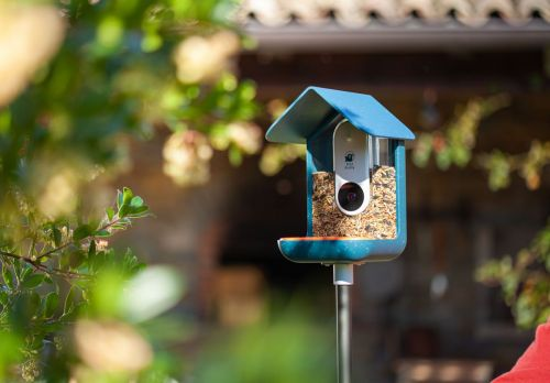 This Bird Feeder Is All Kinds Of Smart