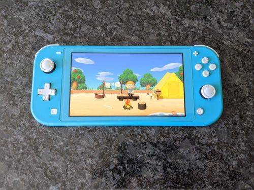 Can you play Animal Crossing: New Horizon on your Nintendo Switch Lite?