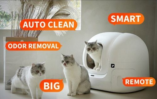 Automatic self cleaning cat litter box keeps your cat healthy and clean
