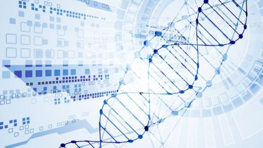 ADHD risk is linked to many different genetic variants