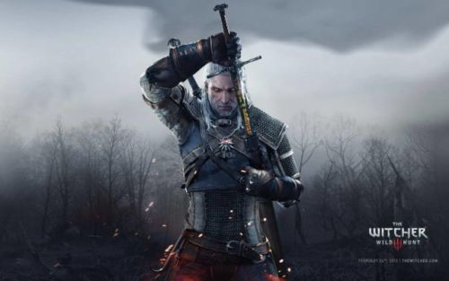 New Information About The Witcher Series Revealed