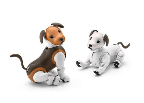 New Sony Aibo Choco Edition robot dog unveiled