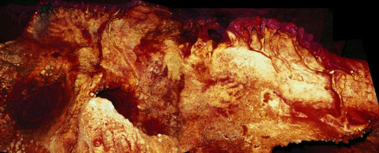 Neanderthals were artists and thought symbolically, new studies argue