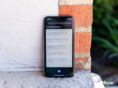 How to use Siri to search the web