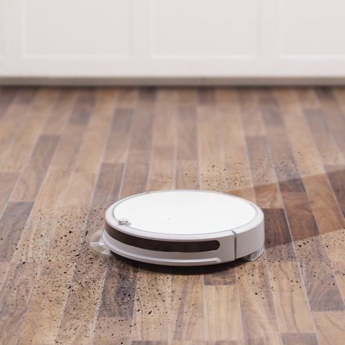 This Roborock robot vac is getting in on spring cleaning at a new low price