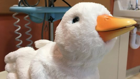 Robot ducks are comforting children in hospital