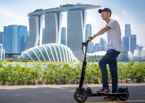 36V Mustang GX Pro electric scooter