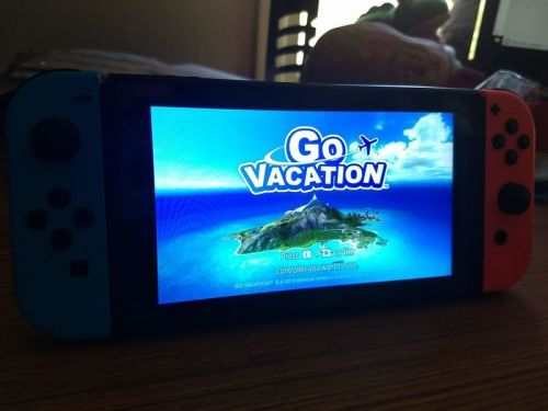 Go Vacation for Nintendo Switch: Beginners Guide