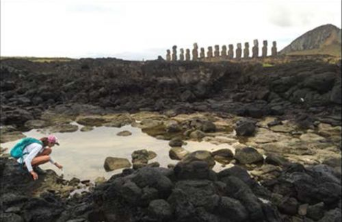 How did Easter Islanders survive without wells or streams?