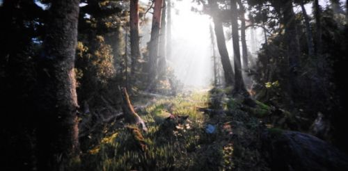 Unity's asset store boss has big plans to fight Epic's Unreal
