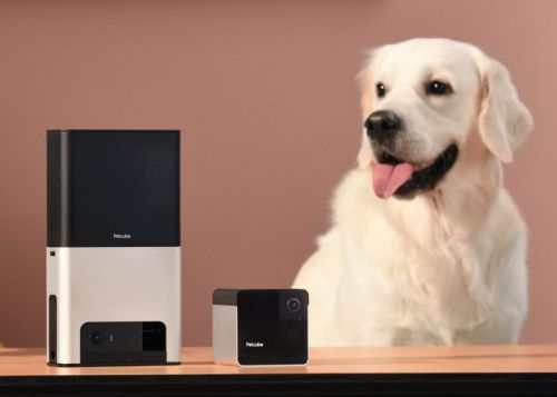 Petcube 2 monitor lets you treat your pets using Amazon Alexa