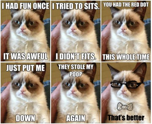'Grumpy Cat', One Of The Internet's Most Popular Memes, Has Died