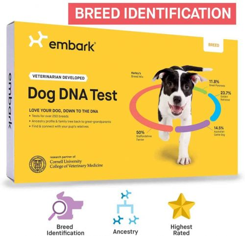 Find Out Your Dog's DNA With This Discounted Embark DNA Test