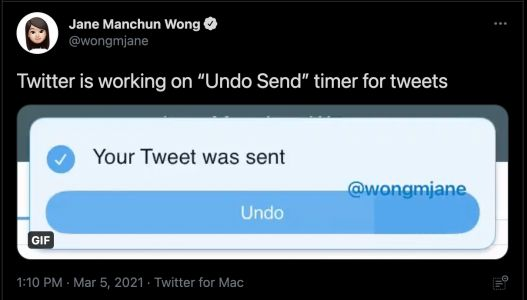 "Twitter testing out ""undo send"" for paying subscribers"