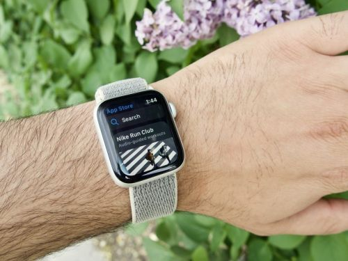 How to update from a watchOS 6 beta to the official release
