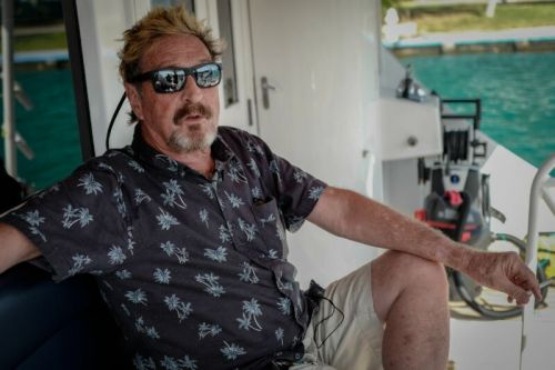 Feds indict John McAfee for cryptocurrency pump-and-dump fraud