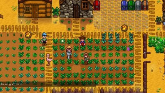 Stardew Valley Multiplayer Will Feature Both Local & Online Play