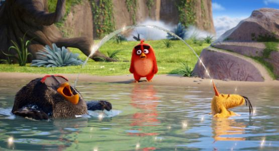 Rovio shares crash 19% after Angry Birds maker's disappointing first post-IPO earnings
