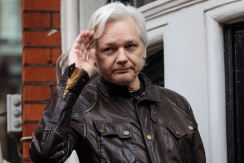 Ecuador wanted to make Julian Assange a diplomat and send him to Moscow