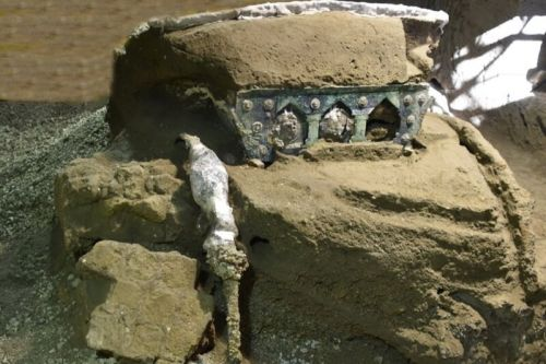 """Archaeologists discover """"Lamborghini"""" of chariots near ruins of Pompeii"""