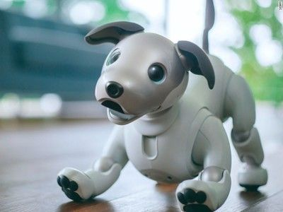 Um, Sony made a robot puppy and you can pre-order it for $2,900