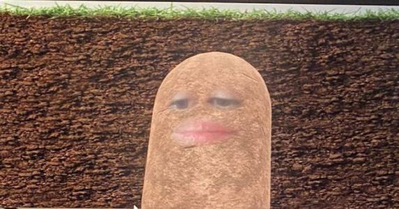 Woman Turned Herself Into A Potato During A Video Meeting, But Couldn't Figure Out How To Turn It Off