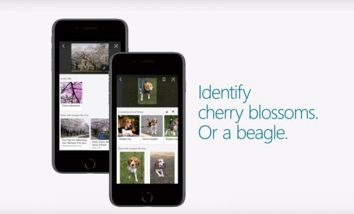 Microsoft launches new Bing visual search features on Android and iOS